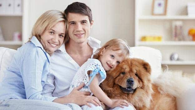 Wills & Trusts dog-young-family Direct Wills Northolt